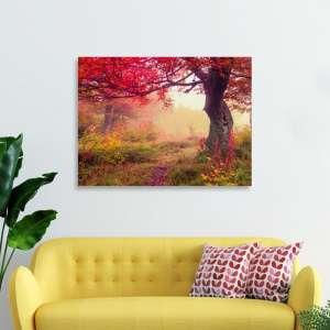 Slike_na_platnu_priroda_Čudesno_drvo