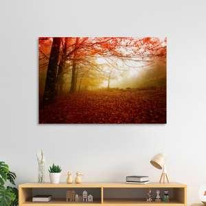 Slike na platnu Maglovita šuma