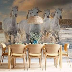 Foto tapeta Herd of Horses